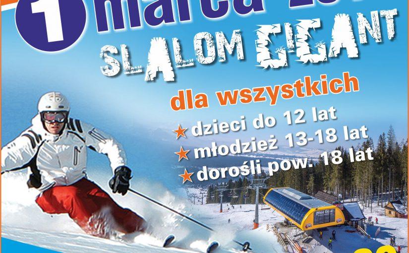 """Zawody narciarskie """"O Puchar Stacji Narciarskiej Małe Ciche"""" 2015"""