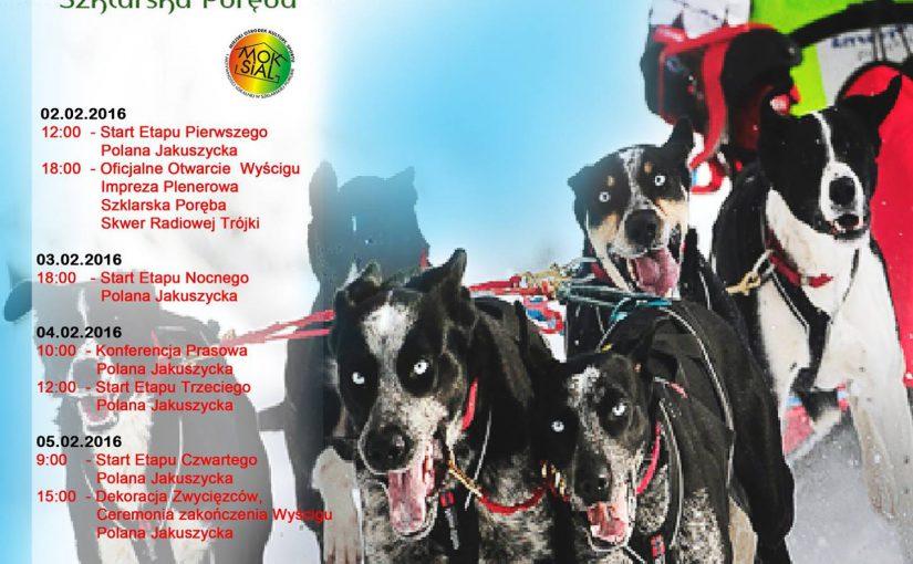 Alwero Border Rush 2016, czyli międzynarodowy wyścig psich zaprzęgów w Szklarskiej Porębie